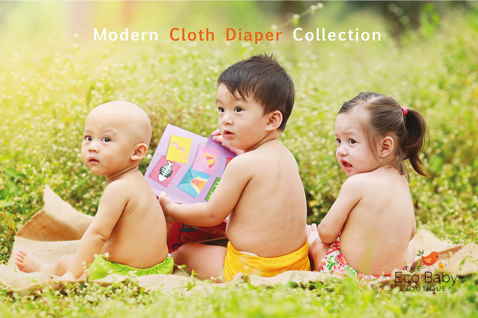 Modern-Cloth-Diapers-with-Logo-Transparent-s